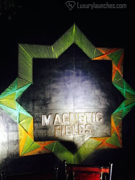 magnetic-fields-festival-5