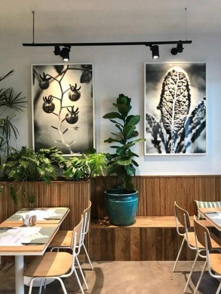 Kitchen Garden Juhu (1)