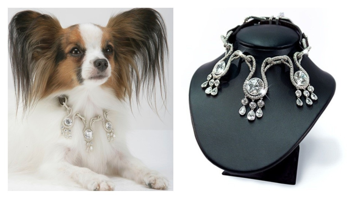 The World S Most Expensive Dog Collar Costs 3 2 Million