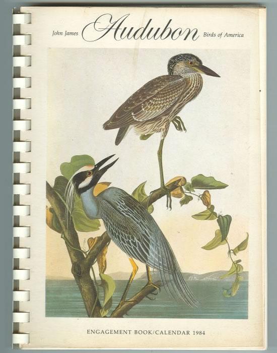 Birds-of-America-1
