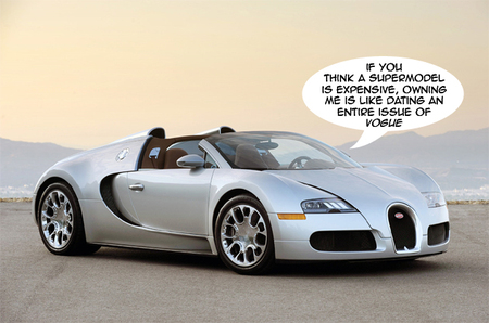 The Bugatti Veyron Is Undoubtedly One Of The Most Expensive Cars. In Fact  We Recommend You Have Enough Dough Left In Your Bank Account After  Purchasing This ...