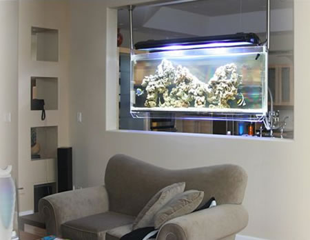 Fishes On The Wallu2026u2026.fishes On The Table As Well As Under The Tableu2026u2026u2026u2026but  Fishes In The Air? I Am Referring To The Fish Aquariums That Are Existing  In ...