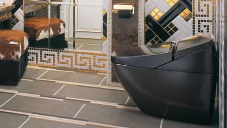 Luxury_toilet_1