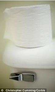 Luxury_toilet_paper