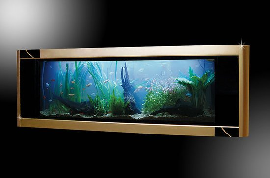 Most_expensive_aquarium-thumb-550x364