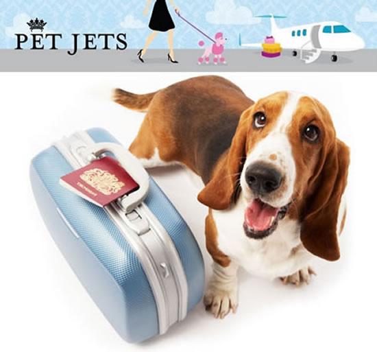 Pet-Jets-Plan