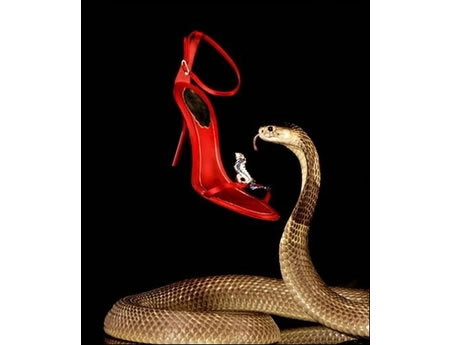 Hissing Snake Guards A Pair Of Blinged Shoes At Harrods