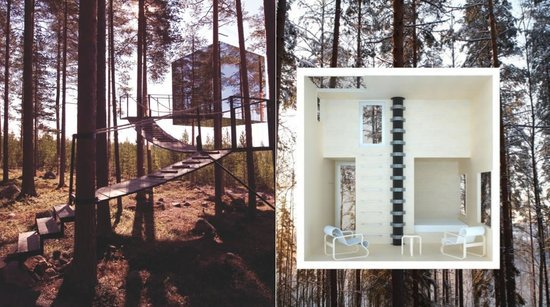 Treehotel1-thumb-550x307
