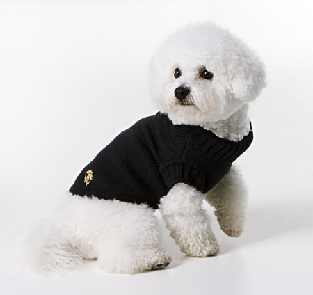 cavalli-duds-for-pets4
