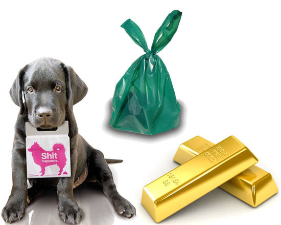 dog-poo-into-gold