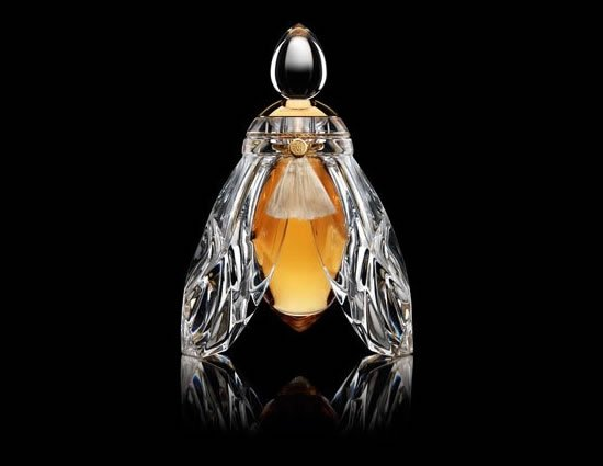 exquisite-fragrance-the-Bee