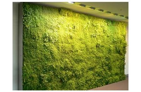 indoorgreen