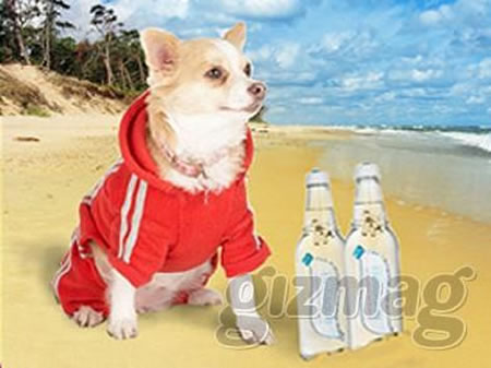 mineral-water-for-dogs