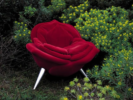 rose_chair-thumb-450x340