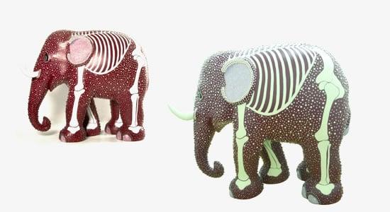 sho_elephants_1