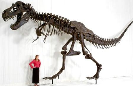 t-rex-replica