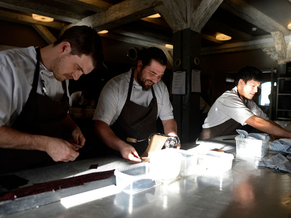 Noma, the world's best restaurant, accidentally poisons guests in Denmark : Luxurylaunches