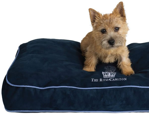 ritz-carlton-pet-bed