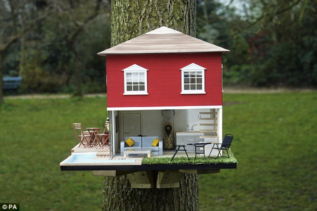 bird-house-6