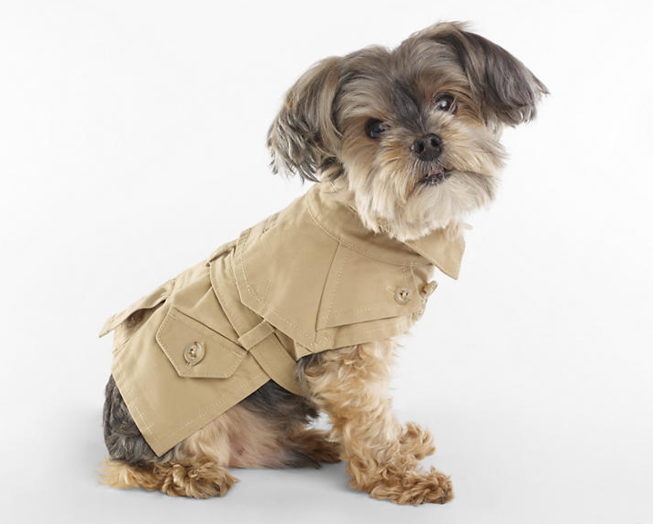Ralph Lauren S 2013 Spring Collection For Dogs