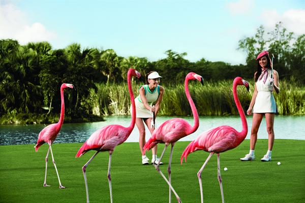 baha-mar-golfing