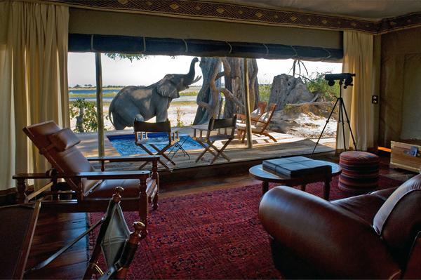 million-dollar-safari-9