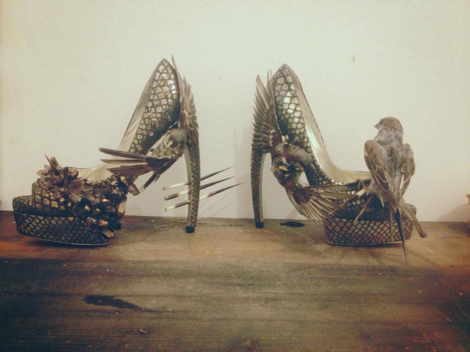 taxidermy-shoes