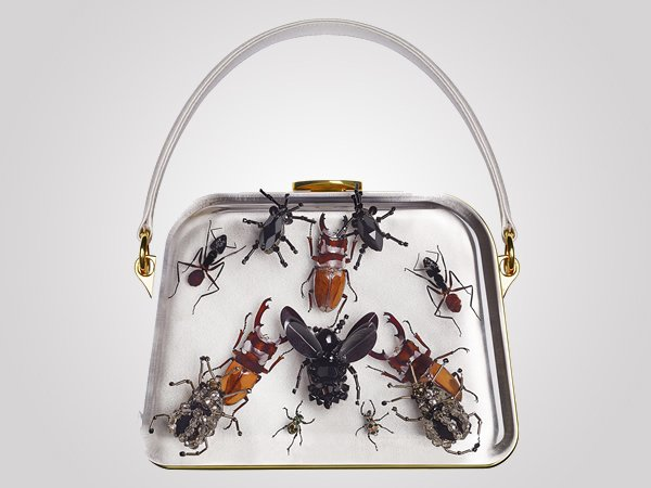 entomology-bag-3