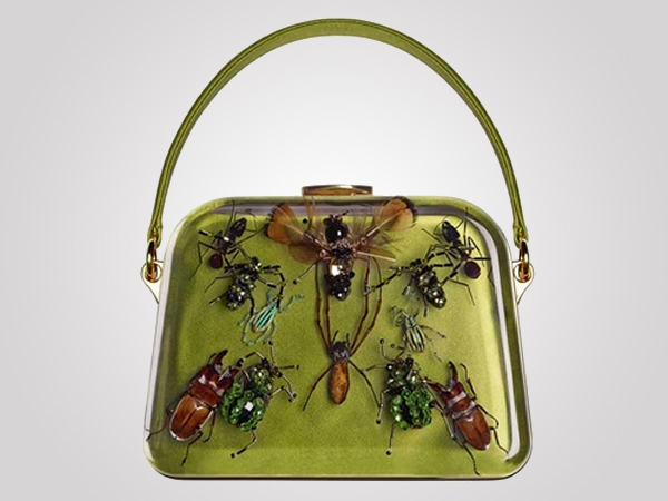 entomology-bag
