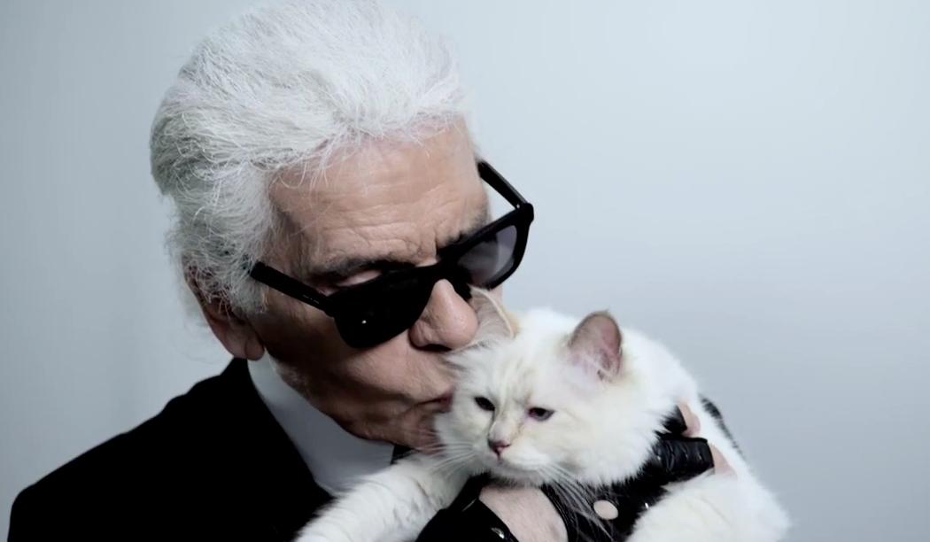 Karl Lagerfeld S Pet Cat Choupette Lends Her Feline Charm