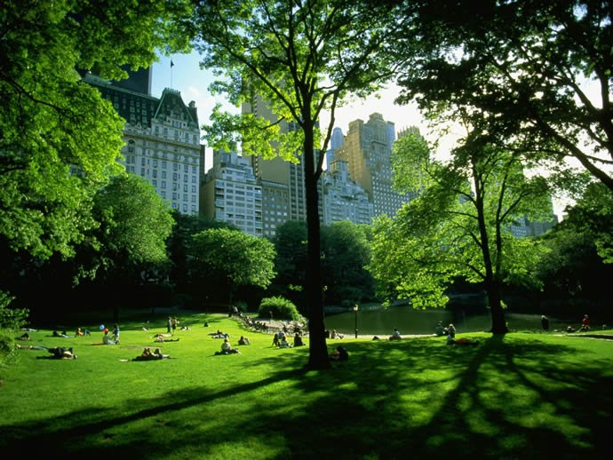 new-york-city-central-park