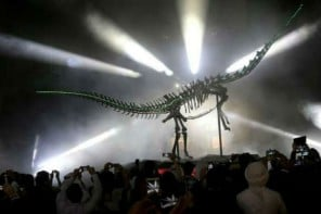 A 155 million year old Diplodocus Skeleton standing 24 m long and 7 m high, finds an unlikely home at  the Dubai Mall