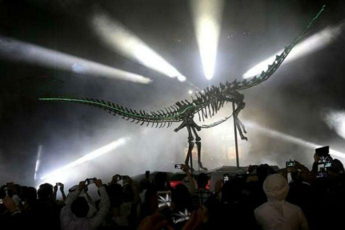 diplodocus-skeleton