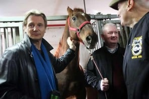 Liam Neeson joins the fight to save New York Central Park's legendary carriage horses