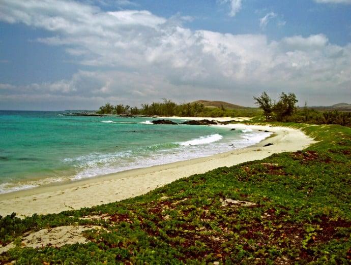 manini-owali-beach-hawaii