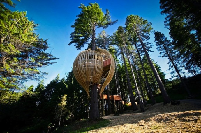 Heights of fine dining: A Treehouse Restaurant suspended 130 feet high in the sky at Auckland, New Zealand