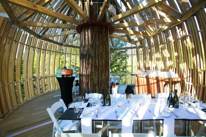 treehouse-restaurant-4