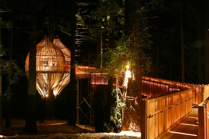 Heights Of Fine Dining A Treehouse Restaurant Suspended