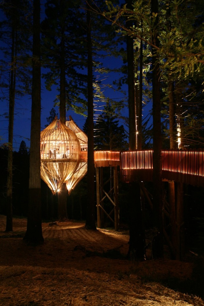treehouse-restaurant-8