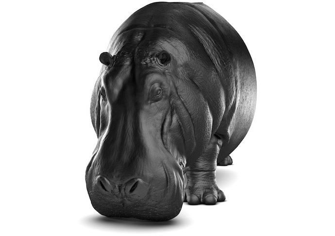 hippopotamus-chair-2
