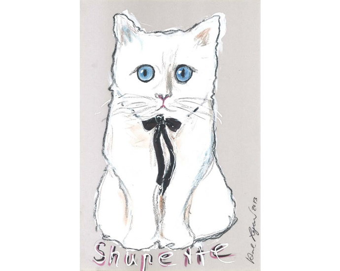 shupette-3