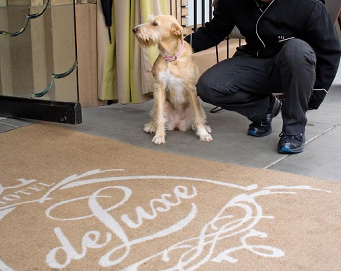 Hotel deLuxe_Pet
