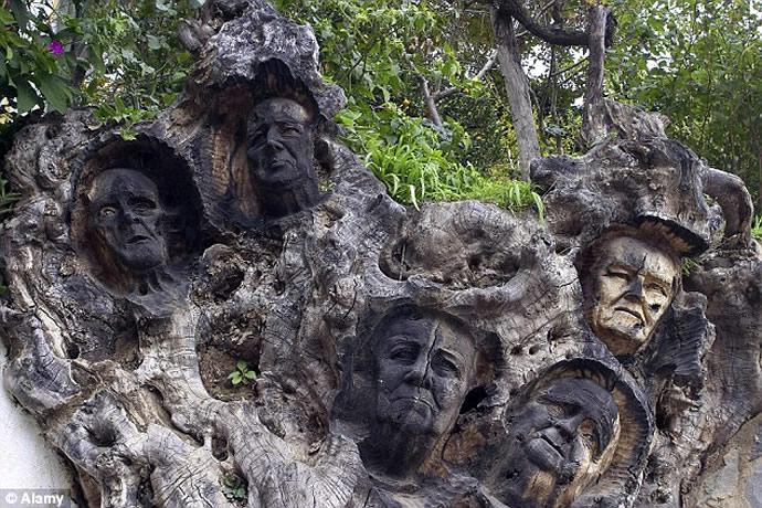 genalguacil-wood