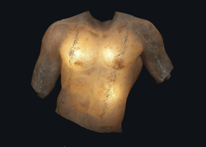 large-illuminated-fibre-glass-male-torso