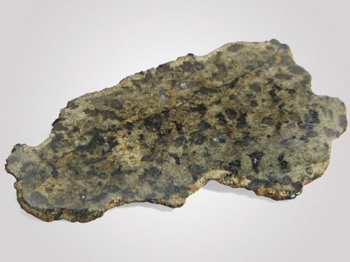 martian-meteorite