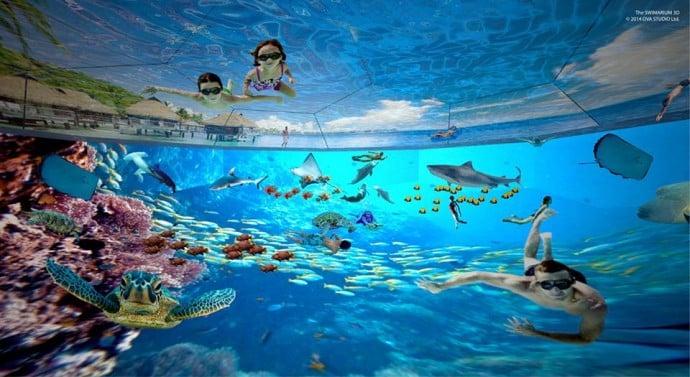 swimarium-3d-1