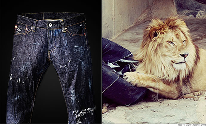 zoo-jeans-2