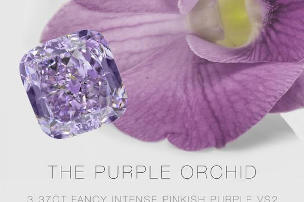 blue-orchide-diamond