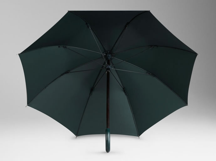alligator-handle-walking-umbrella-5