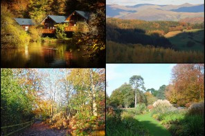 We pick the 10 best places to see Autumn leaves in the UK